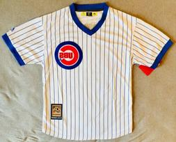1969 Ernie Banks Chicago Cubs White Pinstripe Jersey Size Me