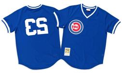 Ryne Sandberg Chicago Cubs Men's Mitchell & Ness Batting Pra